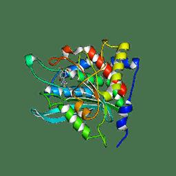 Molmil generated image of 3pbb