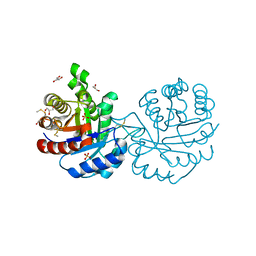 Molmil generated image of 3pf3