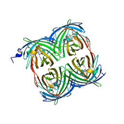 Molmil generated image of 3pib