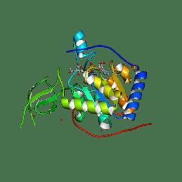 Molmil generated image of 3pkj