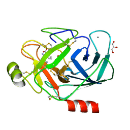 Molmil generated image of 3plk