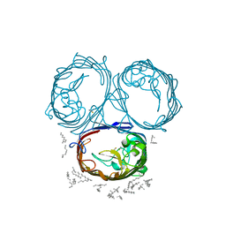 Molmil generated image of 3poq