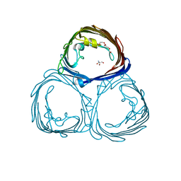 Molmil generated image of 3por