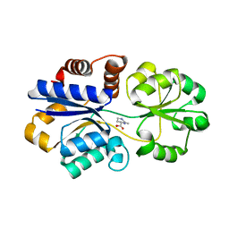 Molmil generated image of 3ppr