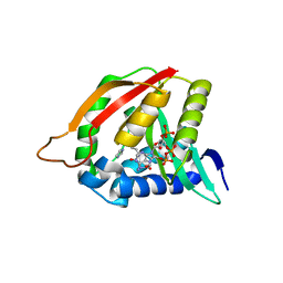 Molmil generated image of 3qb8