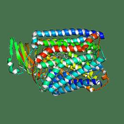 Molmil generated image of 3qjq
