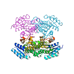Molmil generated image of 3qrw