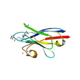 Molmil generated image of 3qxt