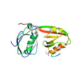 Molmil generated image of 3r0h