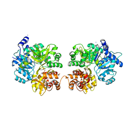 Molmil generated image of 3rg2