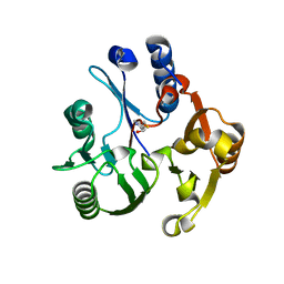 Molmil generated image of 3rhy