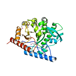 Molmil generated image of 3rpd