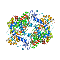 Molmil generated image of 3rr3