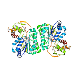 Molmil generated image of 3ru7