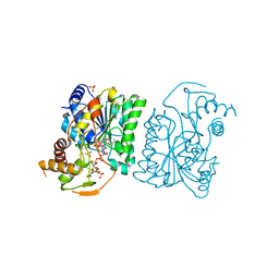 Molmil generated image of 3ruh