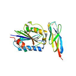 Molmil generated image of 3tcx