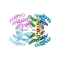 Molmil generated image of 3tn7