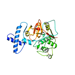 Molmil generated image of 3tnx