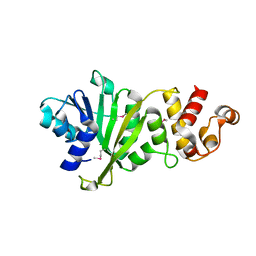 Molmil generated image of 3tqs