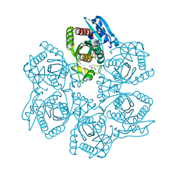 Molmil generated image of 3uay