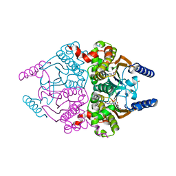 Molmil generated image of 3ucj