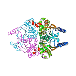 Molmil generated image of 3ucm