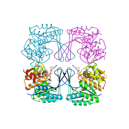 Molmil generated image of 3umo