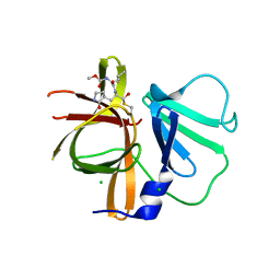 Molmil generated image of 3ur9