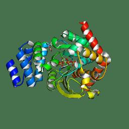 Molmil generated image of 3uu1