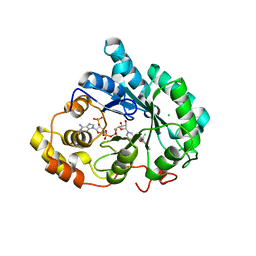 Molmil generated image of 3uzx