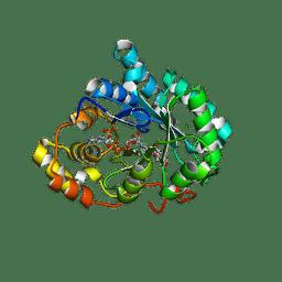 Molmil generated image of 3uzz