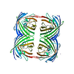Molmil generated image of 3vic
