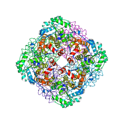 Molmil generated image of 3vkj