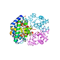 Molmil generated image of 3vrg