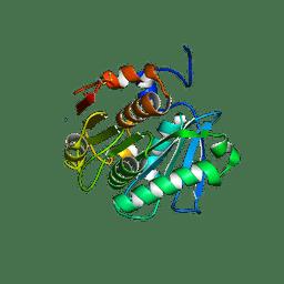 Molmil generated image of 3wyn