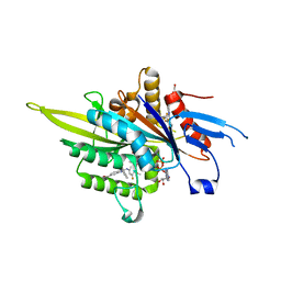 Molmil generated image of 3zcw
