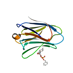 Molmil generated image of 3zxe
