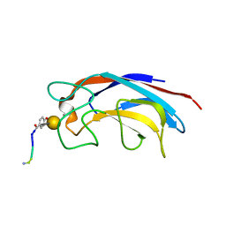 Molmil generated image of 3zyb