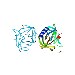 Molmil generated image of 3zyd