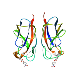 Molmil generated image of 3zyf