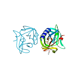 Molmil generated image of 3zzb