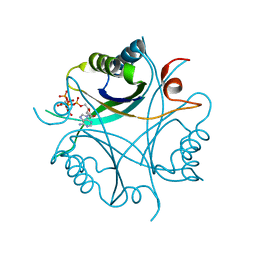 Molmil generated image of 4aff