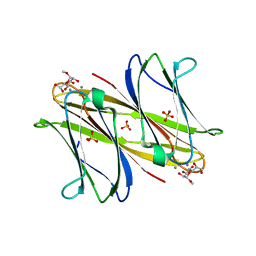 Molmil generated image of 4aoc