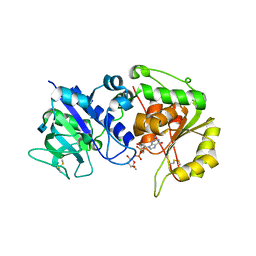 Molmil generated image of 4ap6