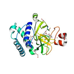 Molmil generated image of 4au7