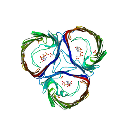 Molmil generated image of 4aui