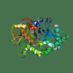 Molmil generated image of 4ay1