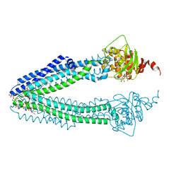 Molmil generated image of 4ayx