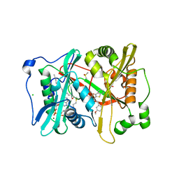 Molmil generated image of 4bbh