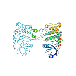 Molmil generated image of 4bdf